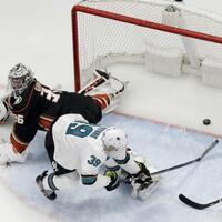 Anaheim Ducks - San José Sharks - Foto: Chris Carlson