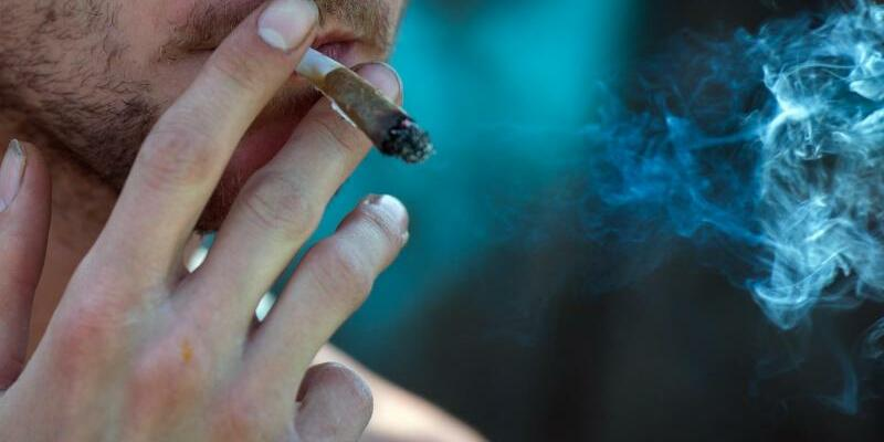 Medizinisches Cannabis - Foto: Arne Immanuel Bänsch
