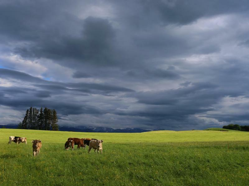Regenwolken - Foto: Karl-Josef Hildenbrand