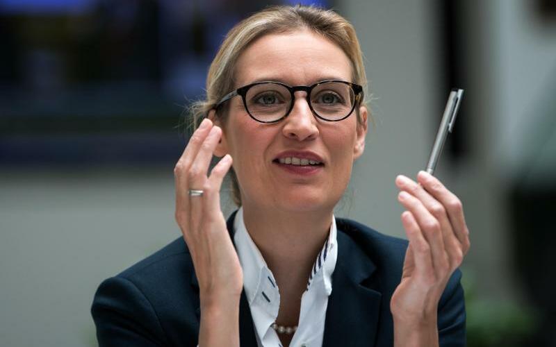 Alice Weidel - Foto: Bernd von Jutrczenka