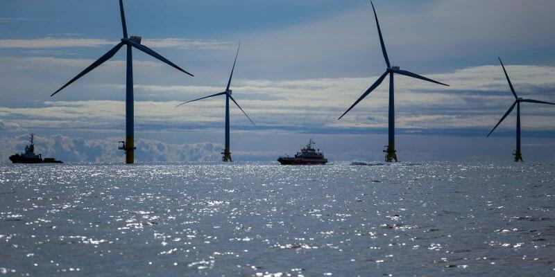 Offshore-Windpark vor Rügen - Foto: Jens Büttner