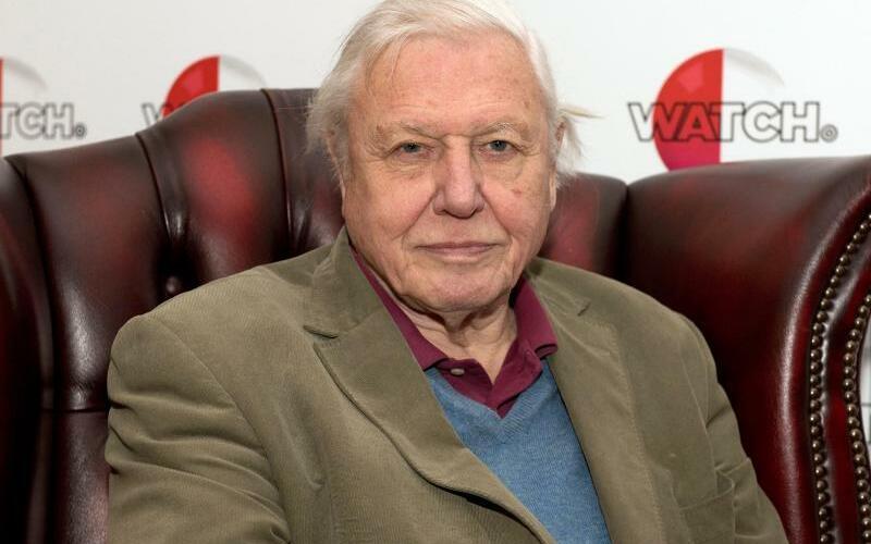 Sir David Attenborough - Foto: Will Oliver