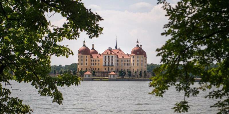 Moritzburg Festival - Foto: Monika Skolimowska