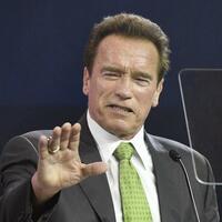 Arnold Schwarzenegger - Foto: Hans Punz