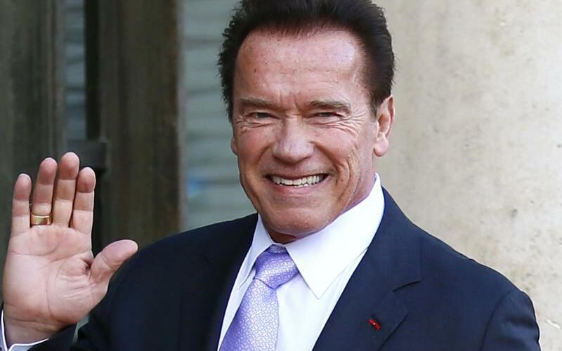 Arnold Schwarzenegger - Foto: Francois Mori/AP