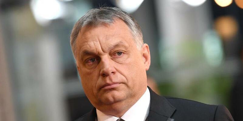 Viktor Orban - Foto: Sven Hoppe