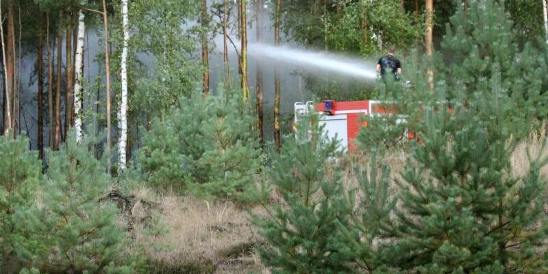 Großbrand in Lieberoser Heide - Foto: Christian Pörschmann