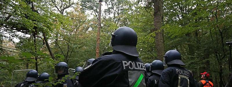 Hambacher Forst - Foto: Oliver Berg