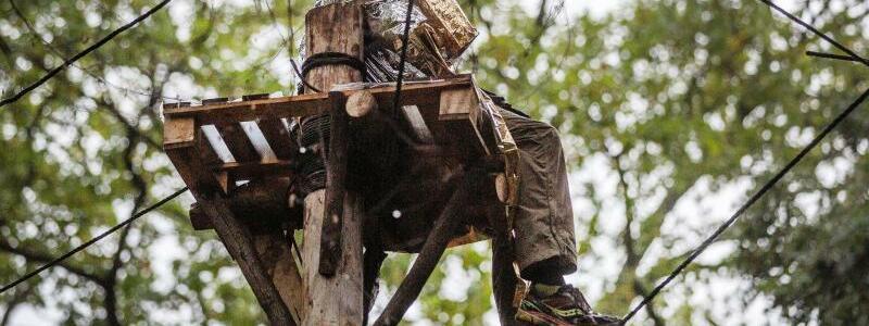 Hambacher Forst - Foto: Ein Umweltaktivist sitzt auf einem Hochsitz. Foto:Christoph Reichwein