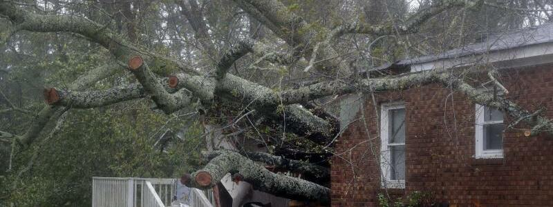 Umgestürzter Baum - Foto: Chuck Burton/AP