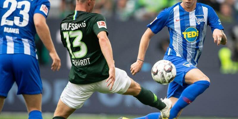 VfL Wolfsburg - Hertha BSC - Foto: Swen Pförtner