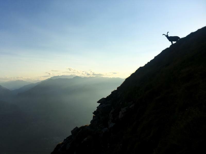 Bergwelt - Foto: Gian Ehrenzeller, Keystone