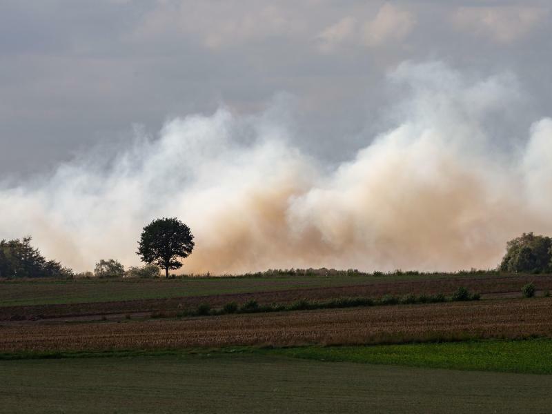 Moorbrand - Foto: Mohssen Assanimoghaddam