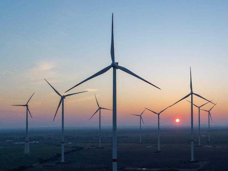 Windpark - Foto: Patrick Pleul