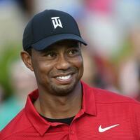 Tiger Woods - Foto: John Amis/AP