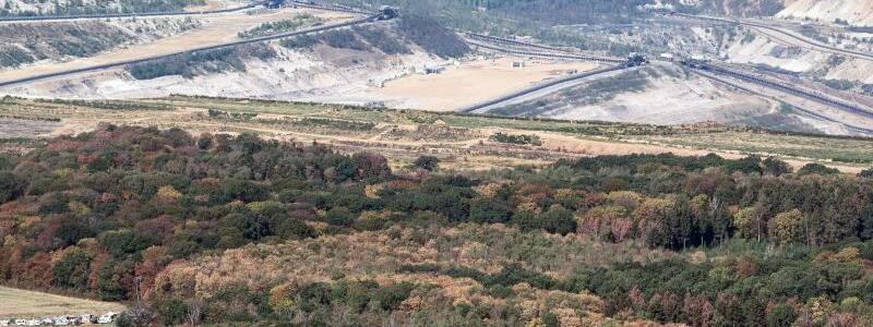 Hambacher Forst - Foto: Der Tagebau von RWE direkt hinter dem Hambacher Forst. Das Unternehmen darf die Bäume an seinem Braunkohletagebau vorerst nicht abholzen. Foto:Federico Gambarini