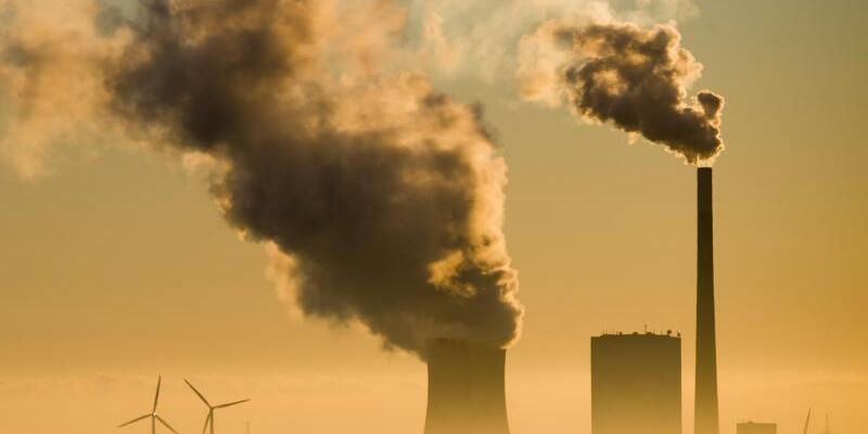 Kohlekraftwerk und Windräder - Foto: Julian Stratenschulte