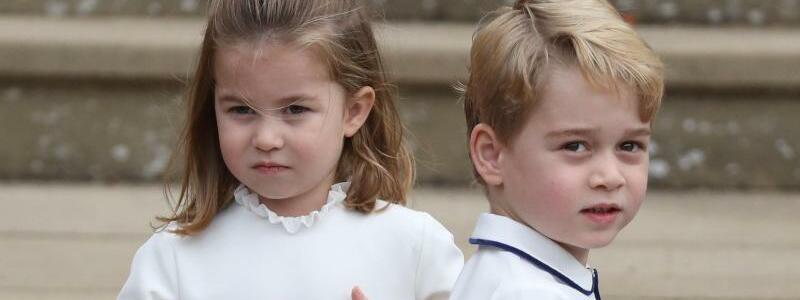 Hochzeit von Prinzessin Eugenie - Foto: Steve Parsons