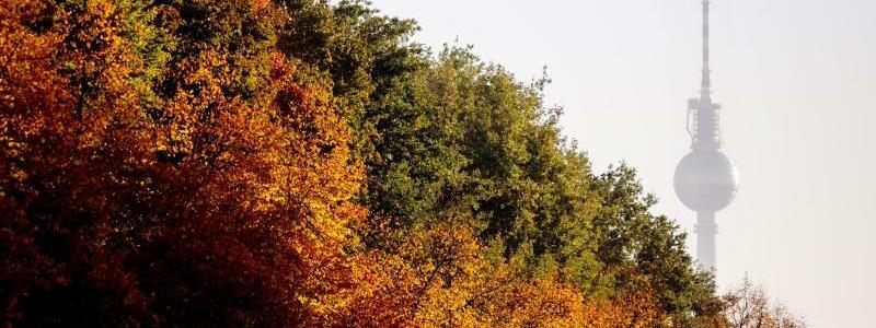Sommerlicher Herbst in Berlin - Foto: Der Fernsehturm ragt hinter herbstlich gefärbten Bäumen an der Straße des 17. Juni hervor. Foto:Christoph Soeder