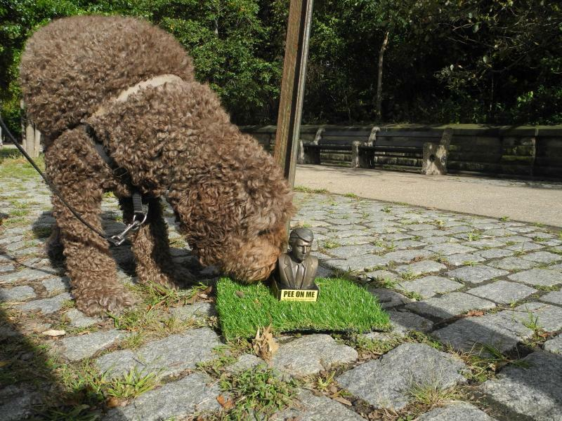 «Pinkel mich an» - Foto: Die Kritik an Donald Trump ist in New York endgültig unterhalb der Gürtellinie angekommen: Eine Figur des US-Präsidenten, die mit der Aufschrift «Pee on me» zum Anpinkeln einlädt, steht auf einem Gehweg im Stadtteil Brooklyn und wird von einem Hund beschn