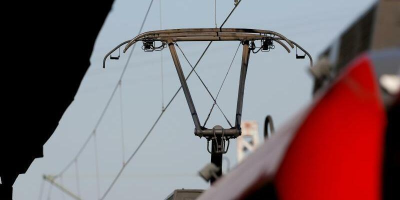 Stromabnehmer - Foto: Roland Weihrauch