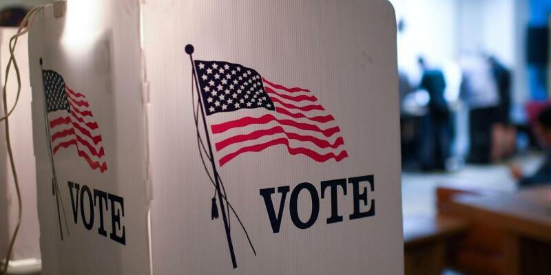 Kongresswahlen in den USA - Foto: Britta Pedersen