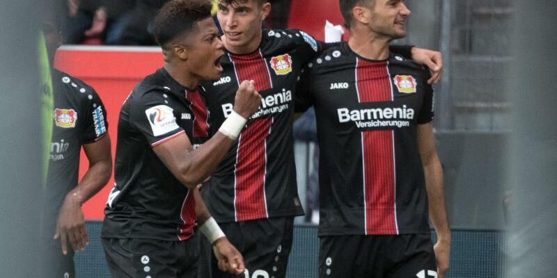 Bayer Leverkusen - Foto: Federico Gambarini
