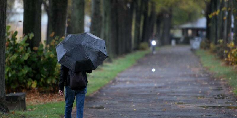 Besser mit Regenschirm - Foto: Henning Kaiser