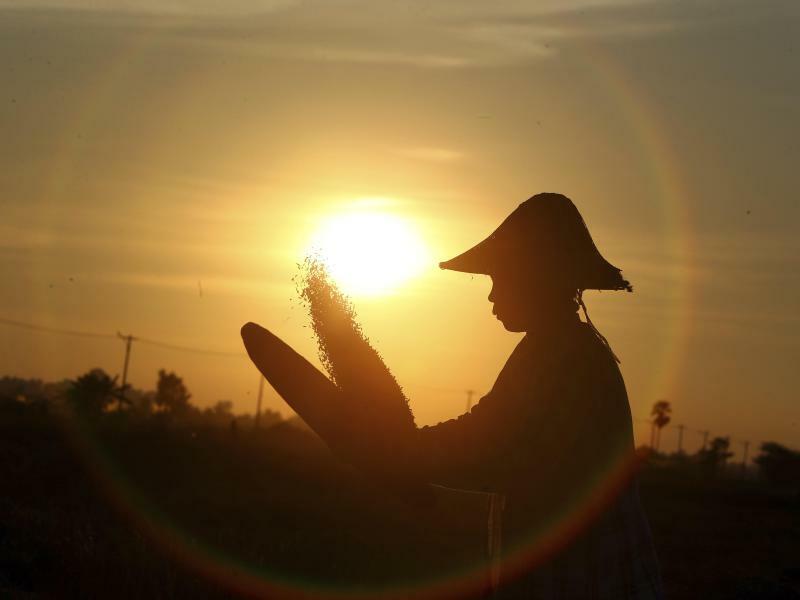 Gegenlicht - Foto: Aung Shine Oo/AP