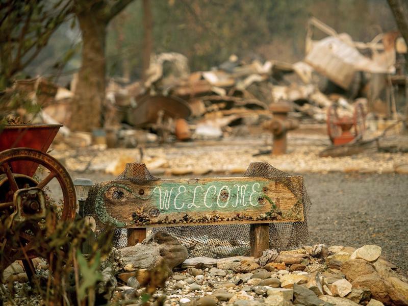 Zerstörung - Foto: Noah Berger/AP