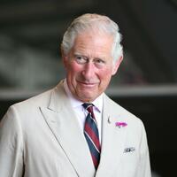 Prinz Charles wird 70 - Foto: Chris Radburn/PA