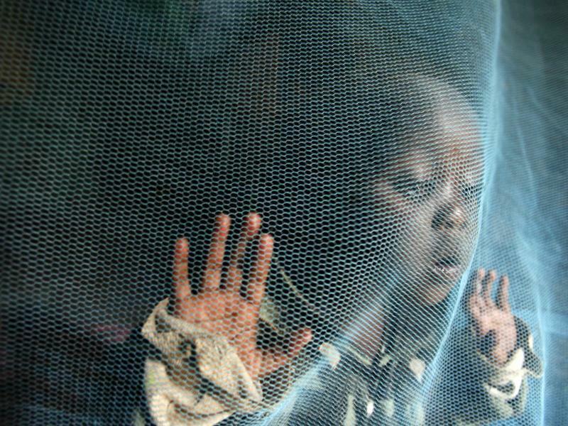 Jahresbericht zur Malaria-Bekämpfung - Foto: Epa Morrison