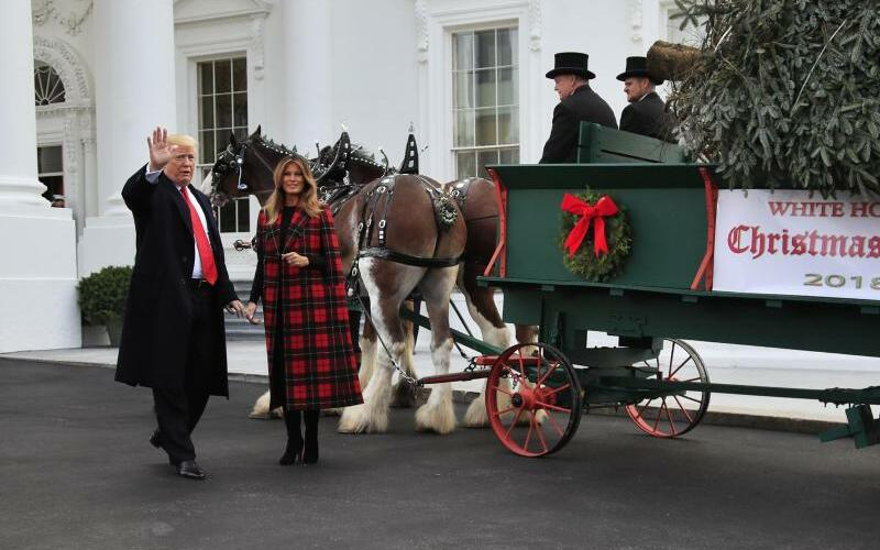 Donald & Melania Trump - Foto: Manuel Balce Ceneta/AP