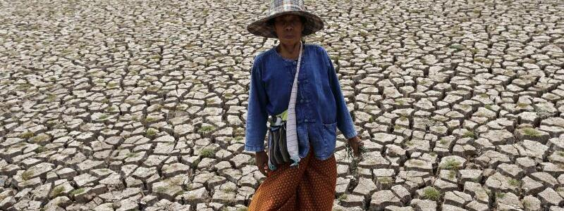 Thailand verdorrt - Foto: Rungroj Yongrit/Archiv