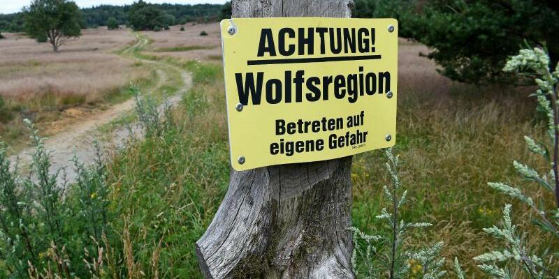 Hinweistafel - Foto: Holger Hollemann