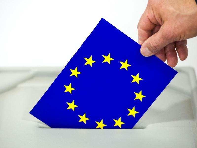 Europawahl - Foto: Patrick Pleul