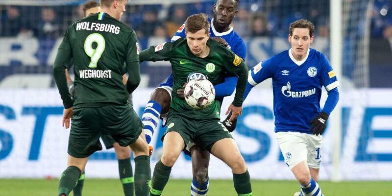 FC Schalke 04 - VfL Wolfsburg - Foto: Bernd Thissen