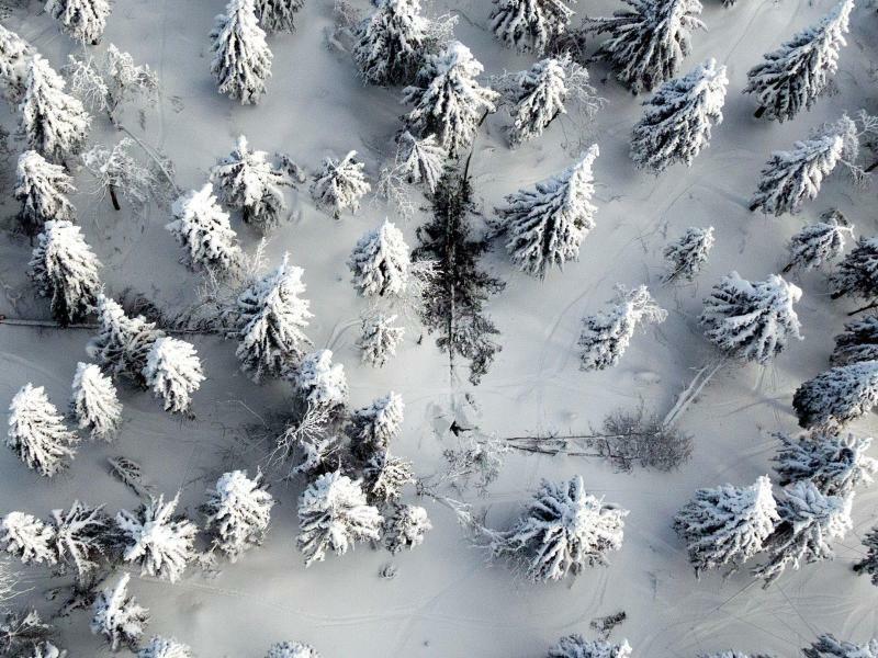 Im Erzgebirge - Foto: Jan Woitas