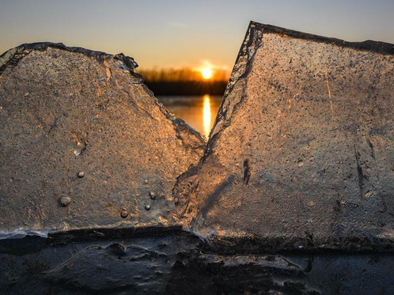 Wintersonne - Foto: Patrick Pleul