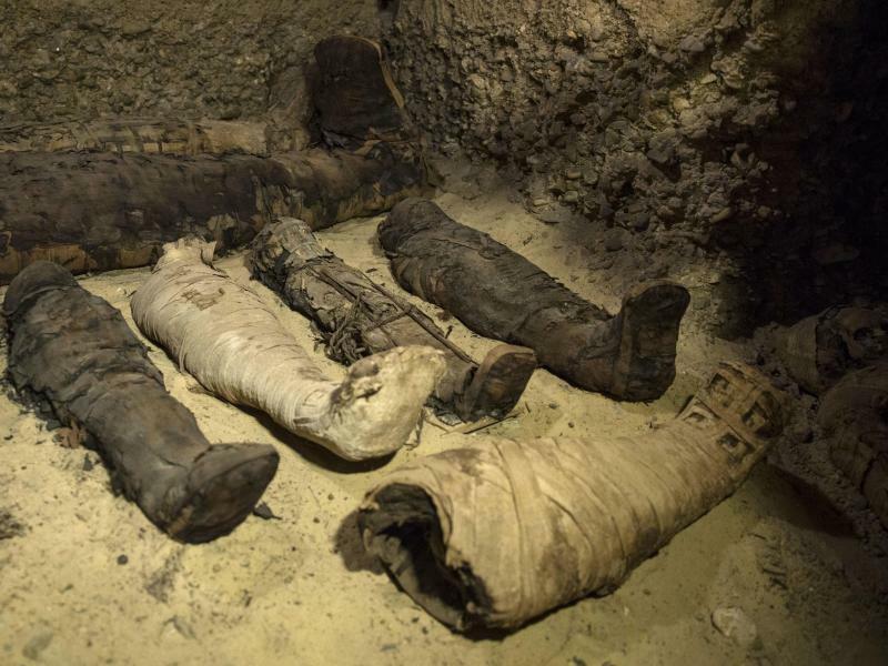 Grabkammer mit 40 Mumien - Foto: Roger Anis/AP