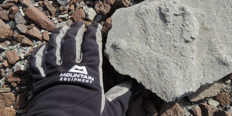 Saurier-Fußabdruck - Foto: Bundesanstalt für Geowissenschaften und Rohstoffe
