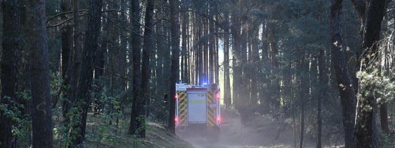 Feuerwehr dämmt Waldbrand ein - Foto: Julian Stähle