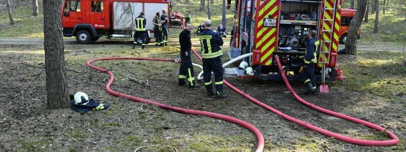 Waldbrand eingedämmt - Foto: Julian Stähle
