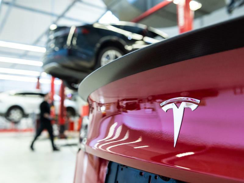 Tesla - Foto: Silas Stein