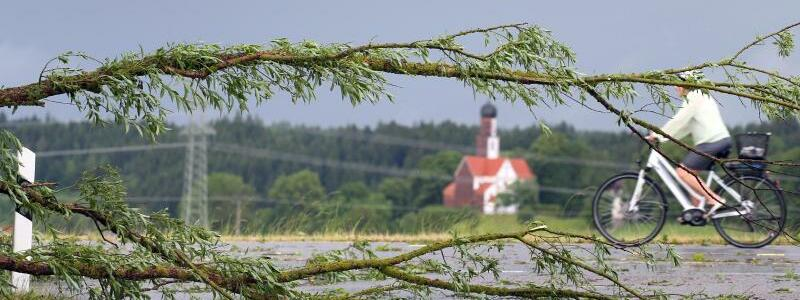 Sturmschäden - Foto: Karl-Josef Hildenbrand