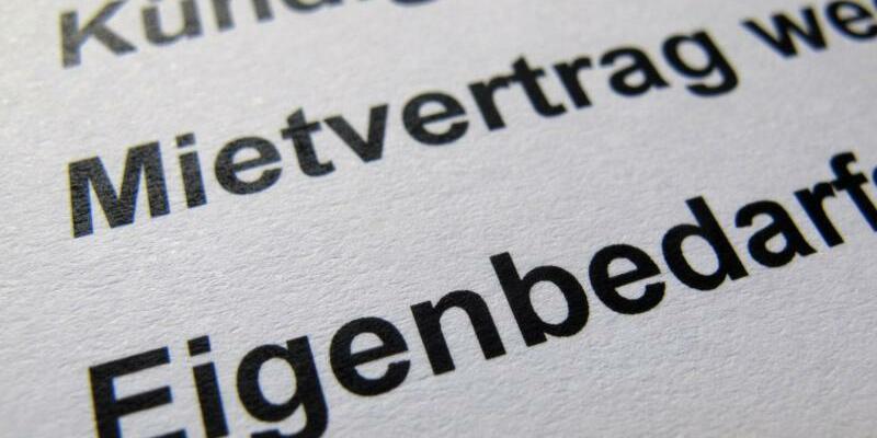 Kündigung wegen Eigenbedarf - Foto: In Deutschland wehren sich nachEinschätzung des Mieterbundes mehr Menschen vor Gericht gegen Eigenbedarfs-Kündigungen. Foto:Stephan Jansen