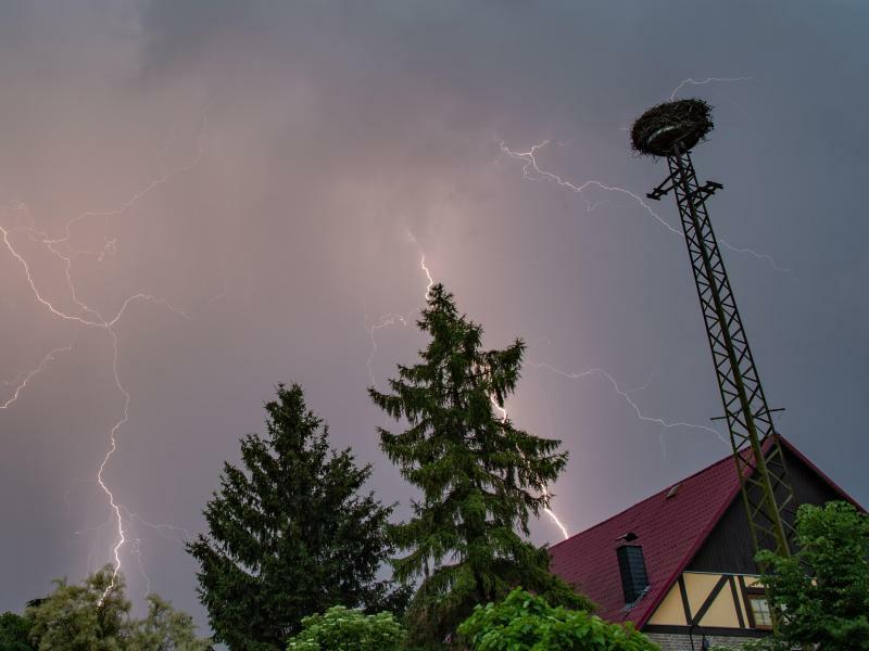 Unter Strom - Foto: Patrick Pleul