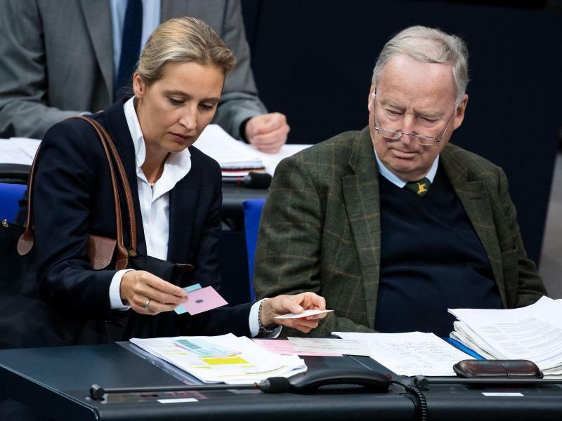 Weidel und Gauland - Foto: Bernd von Jutrczenka