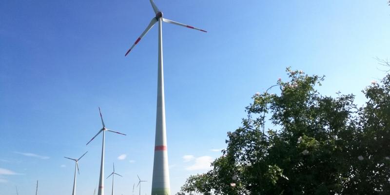 Windräder bei Tantow in Brandenburg - Foto: über dts Nachrichtenagentur