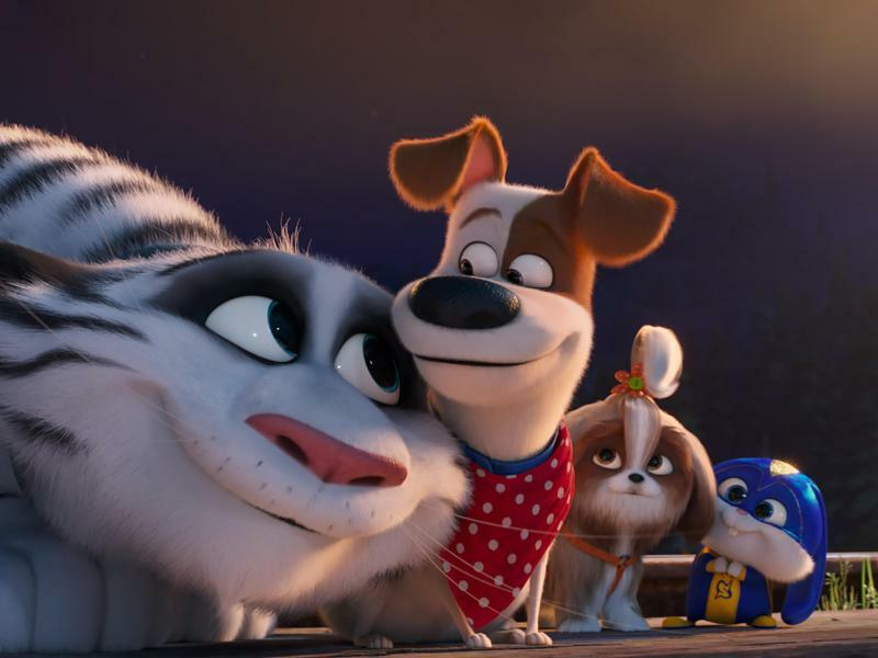 Pets 2 - Foto: Illumination Entertainment and U/Universal Pictures